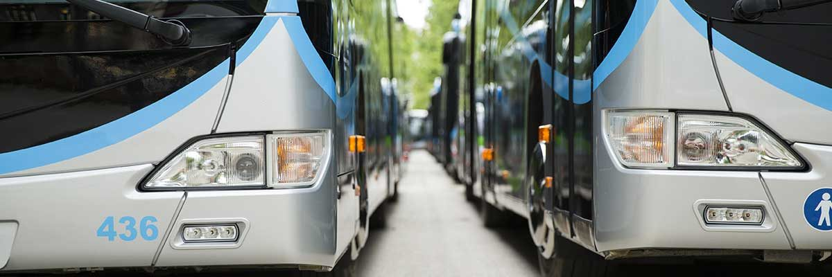 A line of motor coaches. Learn how to operate with motor coach driver training.