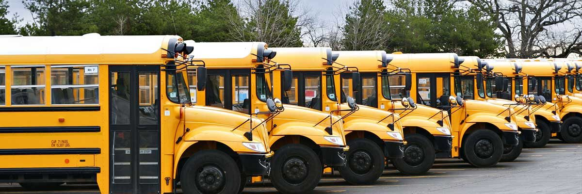 A row of school buses. Become certified with the help of SBSC's school bus driver training program.