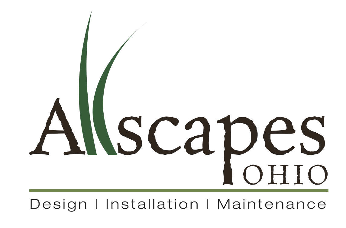 Leaf Removal | Allscapes Ohio